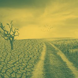 Klimaschutz_Web_1920x1080_2